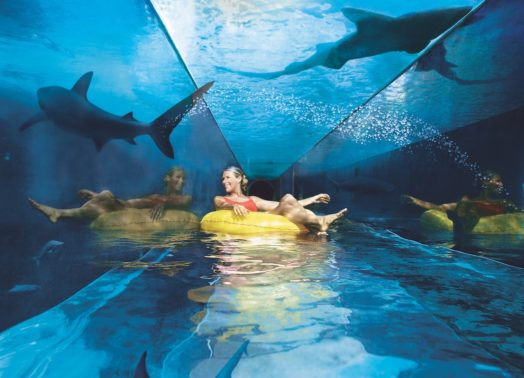 Parcs d'attractions à Dubai - Atlantis