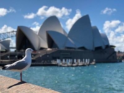 Que faire à Sydney - Top 10 des activités
