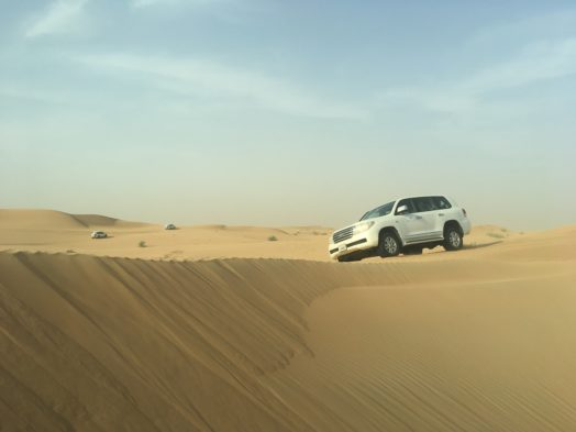 Excursion dans le désert de Dubai