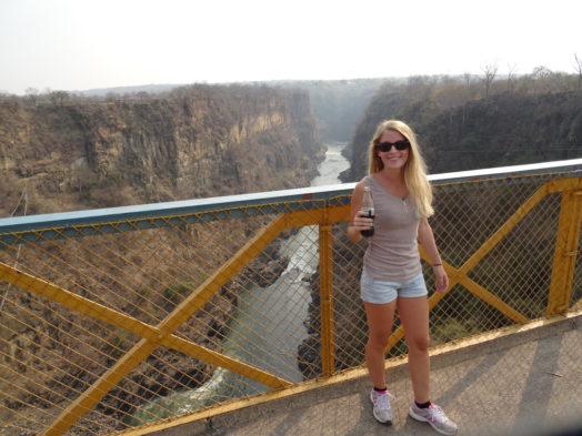 Visite du pont des chutes Victoria et de Victoria Falls