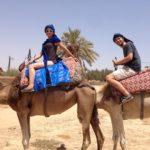 Balade en dromadaire à Marrakech